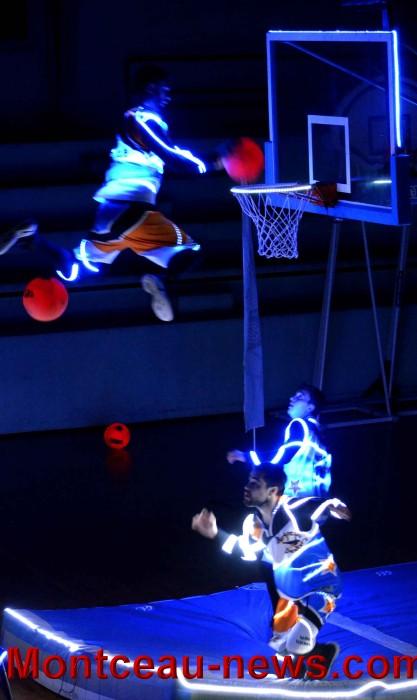 basket 05111736