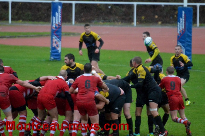 rugby 13111711