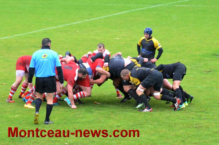 rugby 13111715