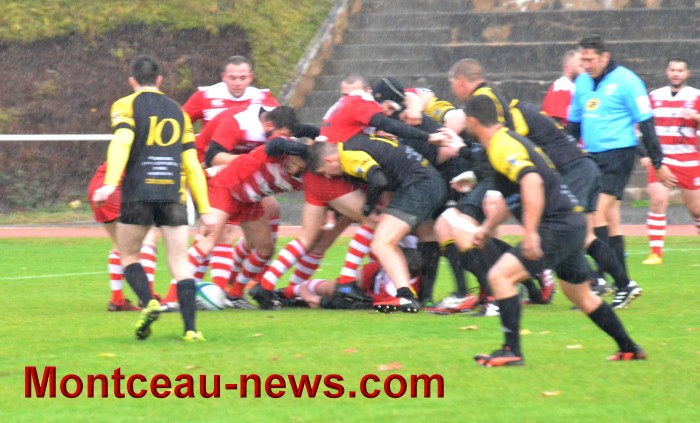 rugby 13111720