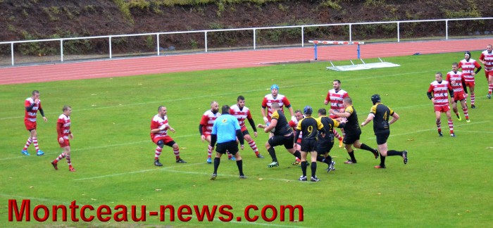 rugby 13111724