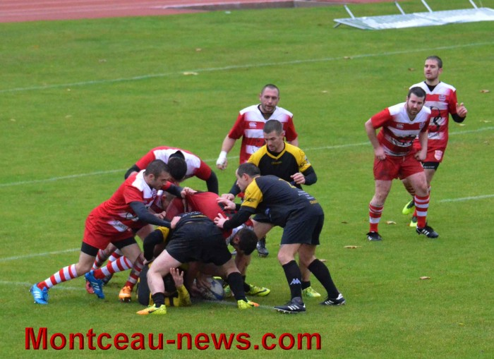 rugby 13111725