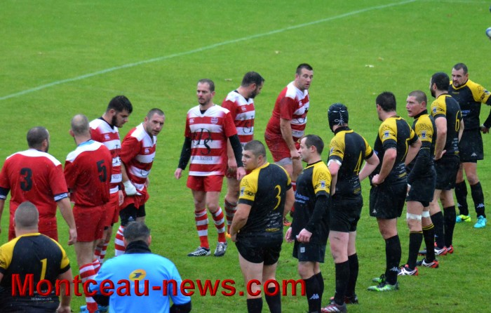 rugby 13111728