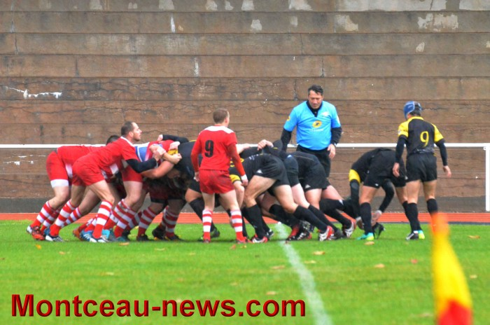 rugby 1311173