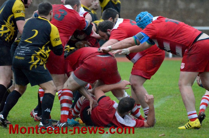 rugby 13111735