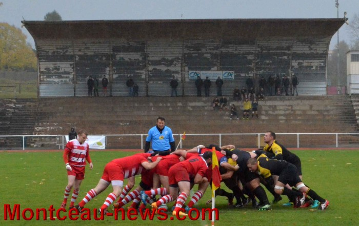 rugby 1311174