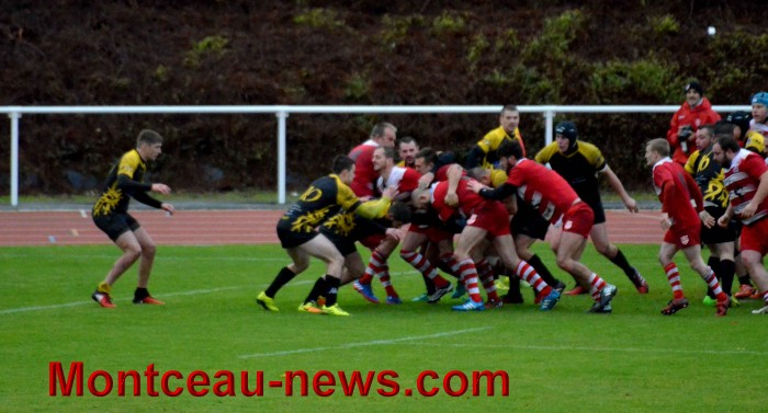 rugby 13111744