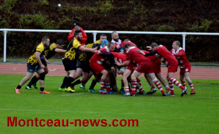 rugby 13111745