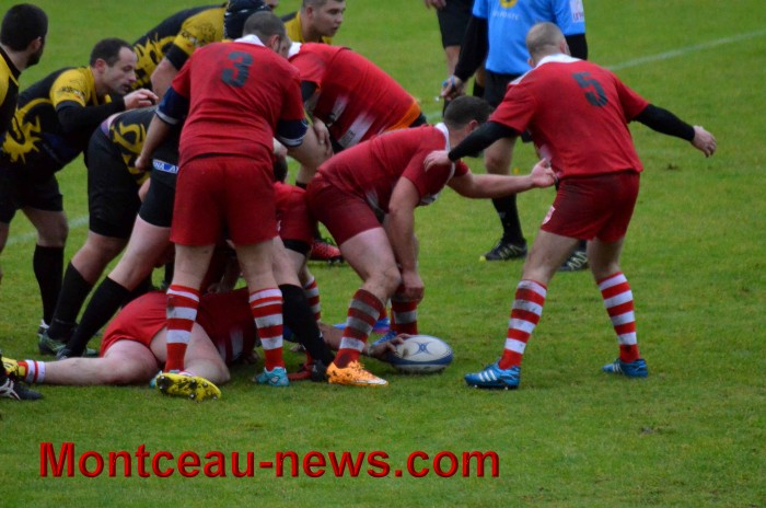 rugby 13111746