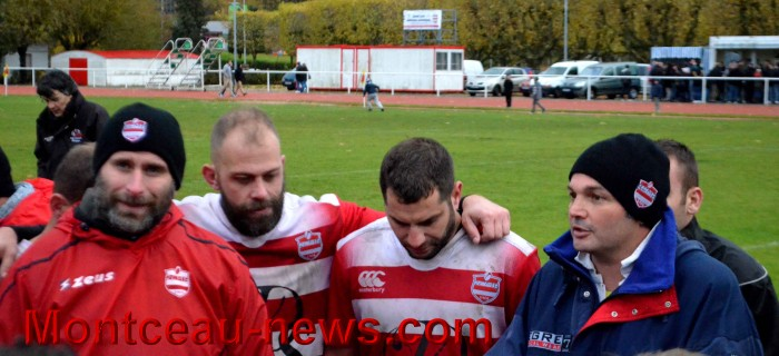 rugby 13111754