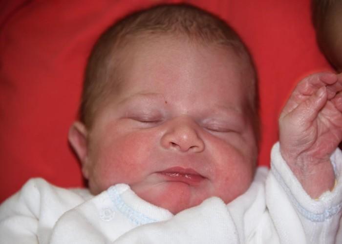 bebe paul 2012174