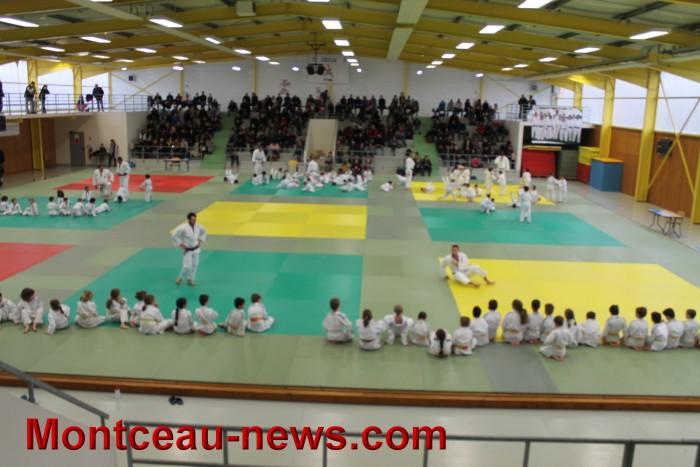 judo 06121712