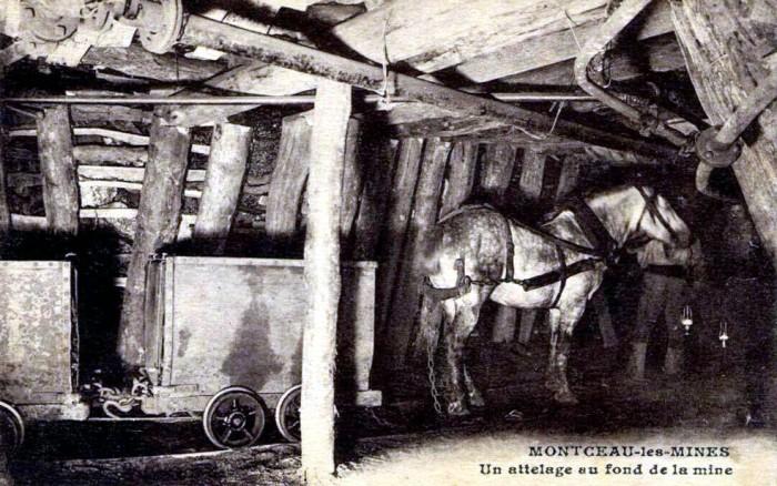 mont 190118