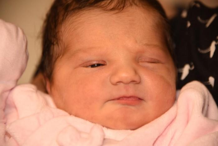 bebe niobe 1303182