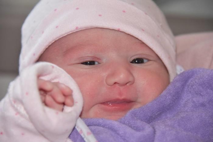 bebe ravza 2403182