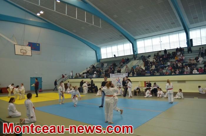 judo 05031837