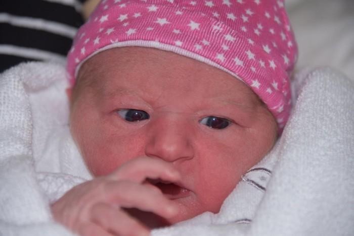 bebe chloe 0504187