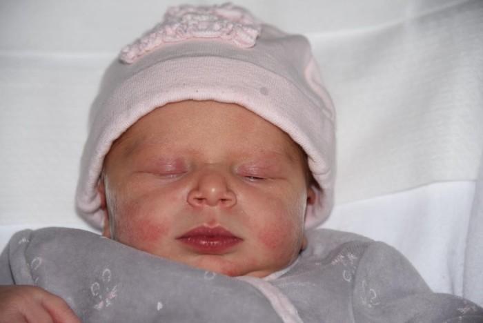 bebe lou 1204182