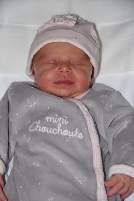 bebe lou 1204183