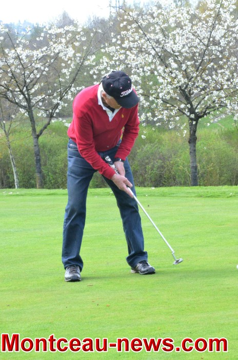 golf 1604186
