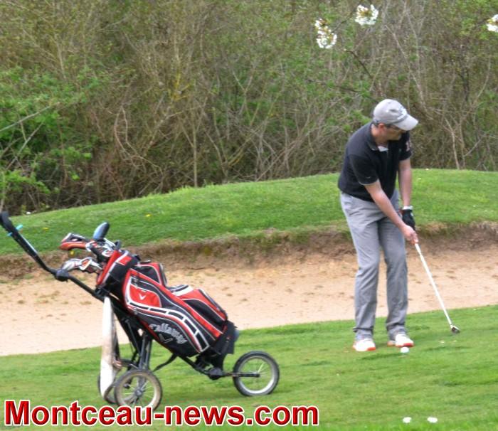 golf 1604189