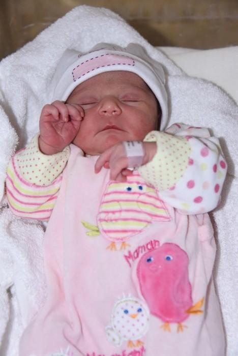 bebe alessia 0905186