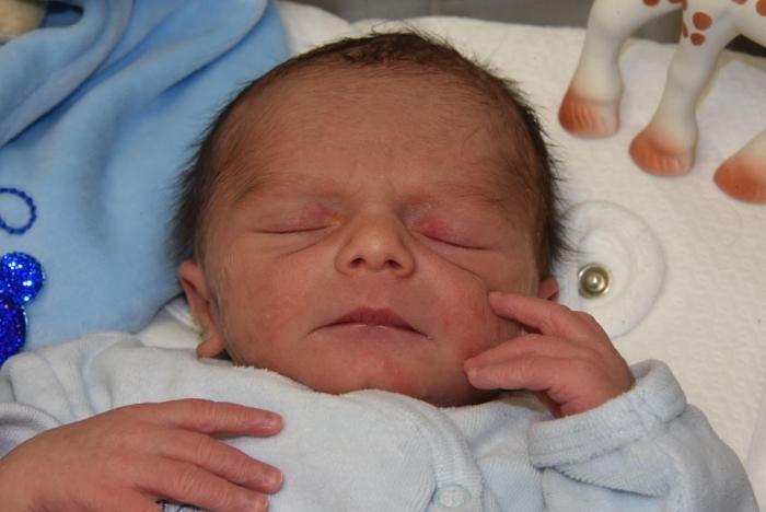 bebe malone 2406182