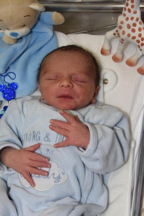 bebe malone 2406183