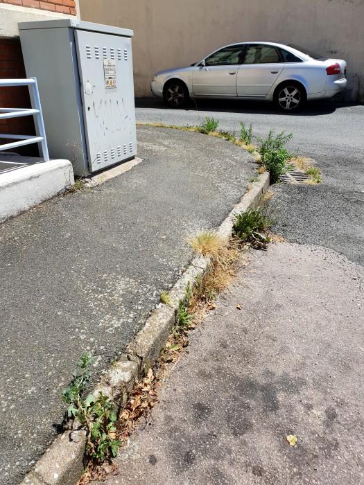 rue 1007183