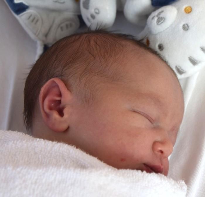 bebe paul 2208184