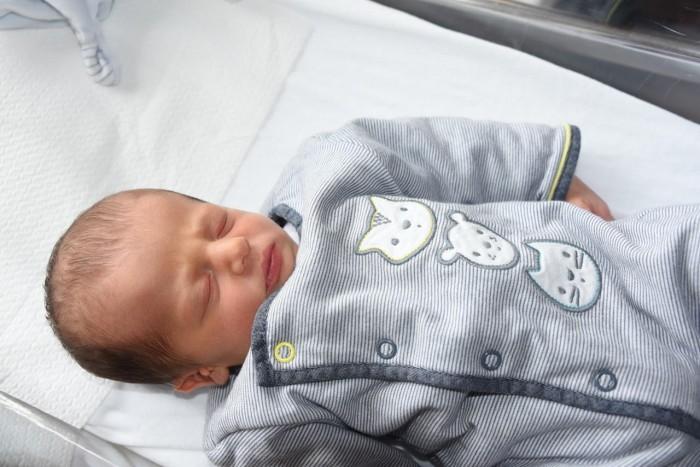 bebe paul 0709183