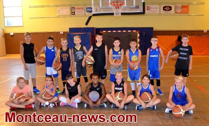 csl basket 0410182