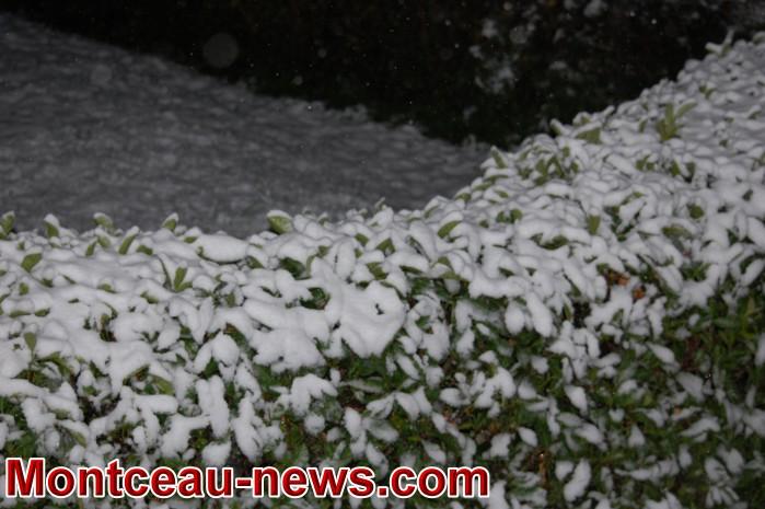 neige 3010182