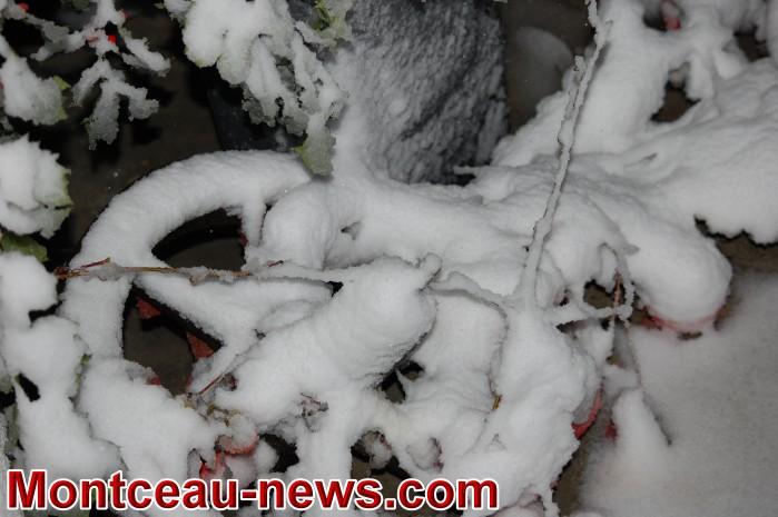 neige 3010185