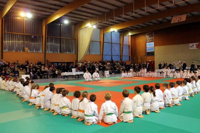 judo 27111811