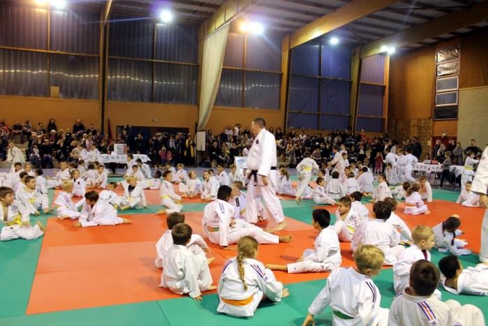 judo 27111812