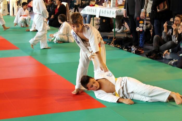 judo 2711187