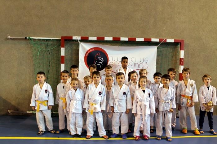 judo 2711188