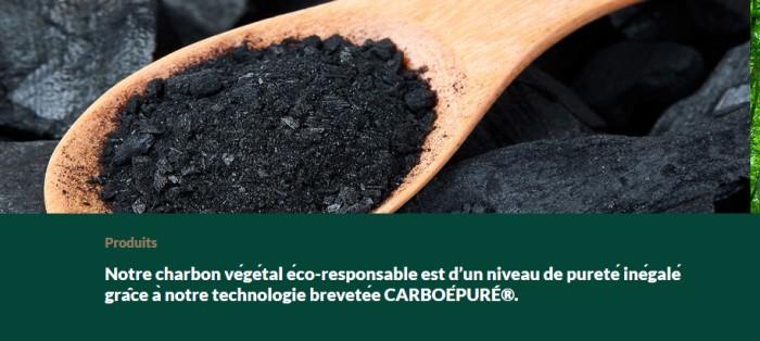 Charbon bois groupe Bordet environnement defense Montceau-news.com 200319