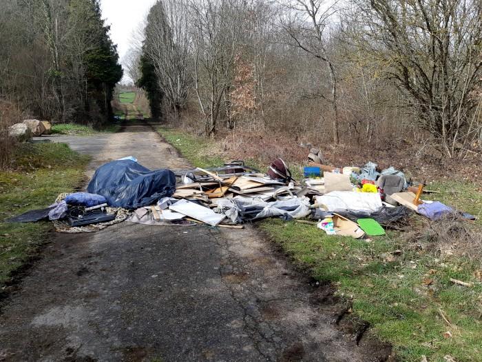 Depot ordures sauvages bois Leu Sanvignes 71 environnement Montceau-news.com 120319