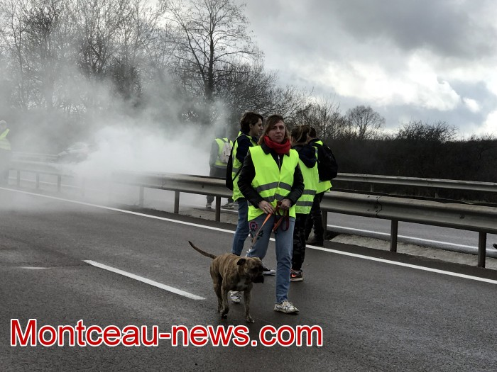 Journee action gilets jaunes Magny 02031930