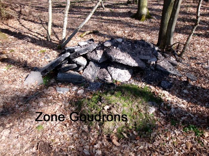 ordures bois wood decharge sauvage nature environnement coup gueule lecteur Montceau-news.com 240319