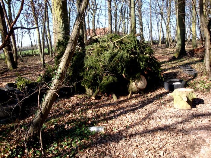 ordures bois wood decharge sauvage nature environnement coup gueule lecteur Montceau-news.com 2403191