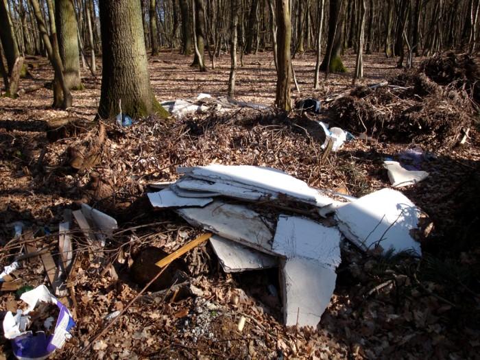 ordures bois wood decharge sauvage nature environnement coup gueule lecteur Montceau-news.com 2403193
