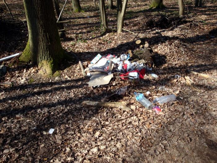 ordures bois wood decharge sauvage nature environnement coup gueule lecteur Montceau-news.com 2403194