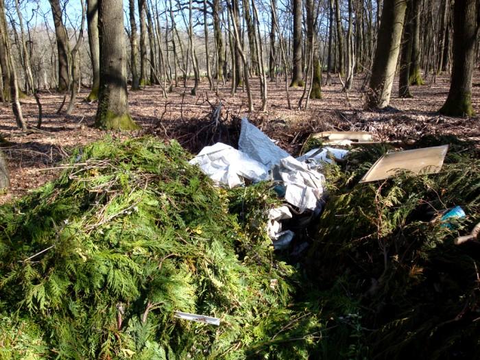 ordures bois wood decharge sauvage nature environnement coup gueule lecteur Montceau-news.com 2403196