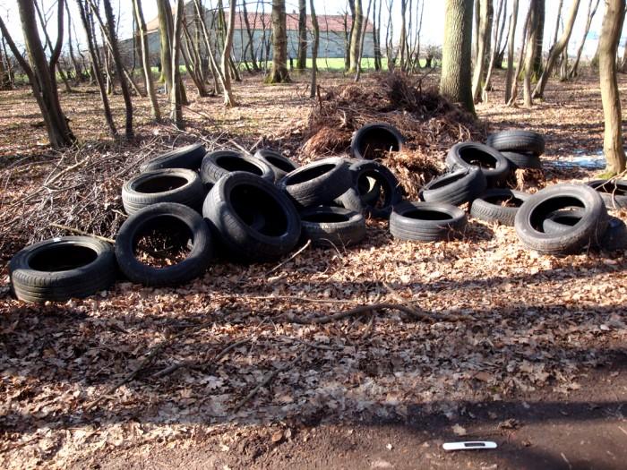 ordures bois wood decharge sauvage nature environnement coup gueule lecteur Montceau-news.com 2403197