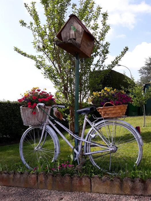 Francette Bordet letruce site web flaurs rhododendron giant Montceau-news.com 140519