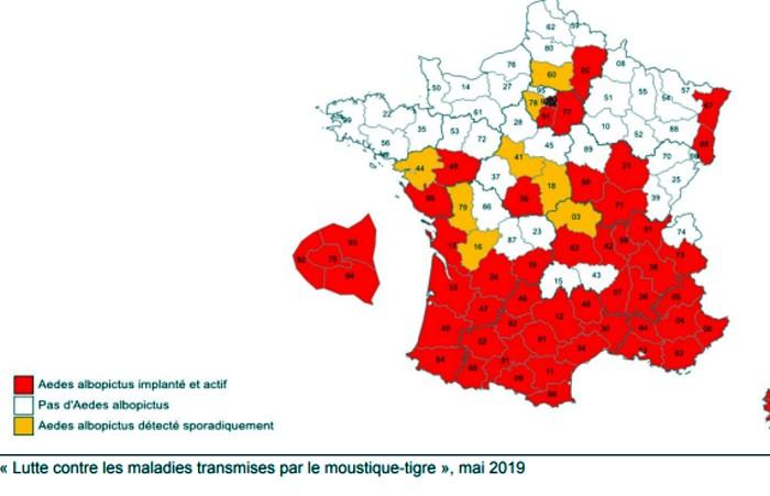 Plan lutte contre moustique tigre maladie chikungugna Antilles grave risques depertement Saone-et-Loire alerte prefecture Montceau-news;com 130519
