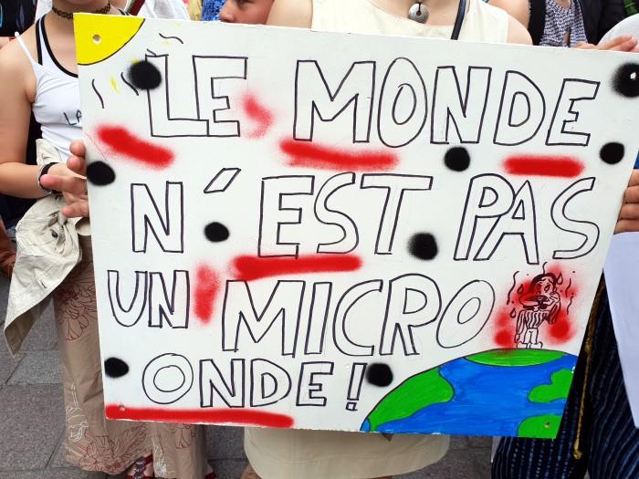 election vote Europe mai 2019 EELV verts politique Bourgogne-Franceh-Comte reaction Claire MALLARD Montceau-news.com 270519